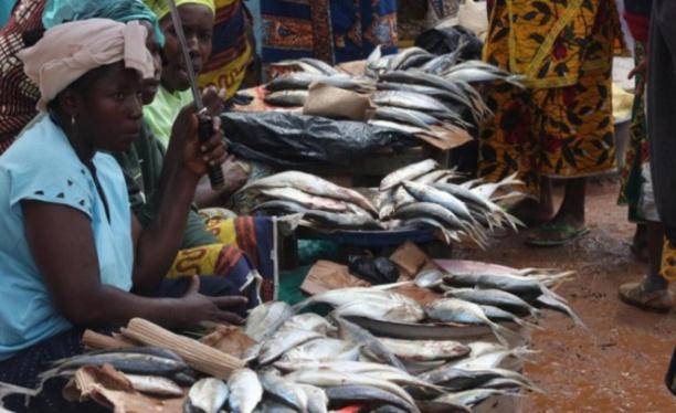 Sénégal : le secteur informel représente 41,6% du PIB