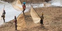 Côte d'Ivoire  : les pays de l'Union du fleuve Mano lancent un projet de gestion des ressources en eau