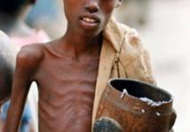 Faim dans le monde : une probabilité d'éradiquer ce fléau dans les années à venir, selon l'ONU