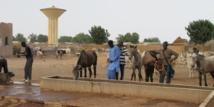 Sénégal : un nouveau fonds pour financer l'auto-emploi des jeunes