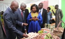 """Entrepreneuriat : Lancement du projet """"Feed the Future Sénégal Jeunesse en Agriculture"""""""