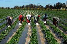 Scandale au Prodac : une entreprise israélienne empoche 12,7 milliards sans justificatifs