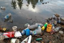 Journée de l'environnement : l'ONU appelle à bannir les produits en plastique à usage unique