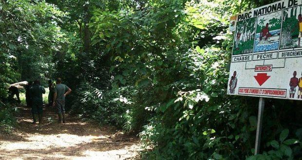 Gestion des forêts transfrontalierères: La Banque mondiale organise un atelier à Kaolack