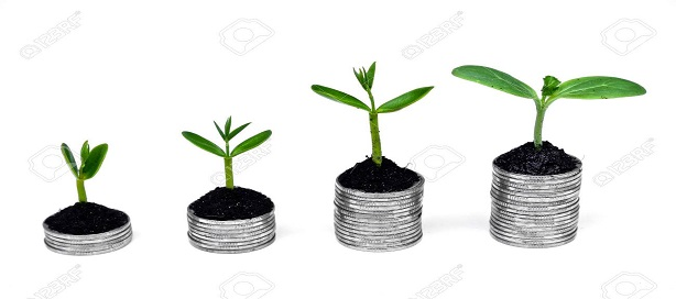 Des arbres qui poussent sur des pièces d'argent.