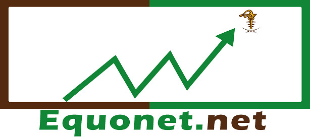 Logo equonet.net