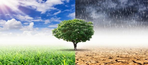 Réaliser les engagements de Paris en matière de changement climatique