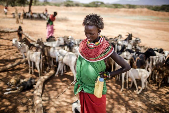 Lancement du rapport du GIEC sur le lien entre changement climatique, terres et alimentation
