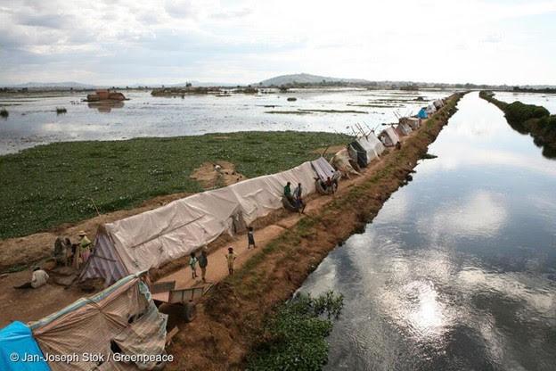 Les événements météorologiques extrêmes menacent la santé humaine, la sécurité alimentaire, la paix et la biodiversité dans de nombreuses régions d'Afrique.