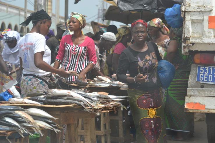 L'emploi en Côte d'Ivoire est fortement dominé par le secteur informel.