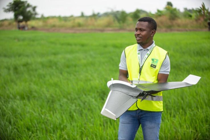 La révolution verte du Ghana n'a pas été aussi réussie que décrite. Wikimedia Commons/Flickr , CC BY-SA