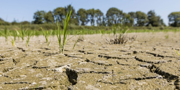 Changement climatique en Afrique.