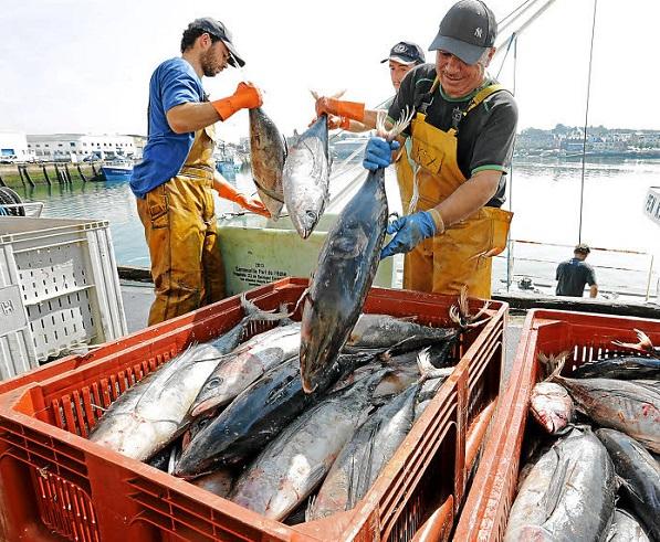 Accords de pêche Ue et Afrique de l'ouest.