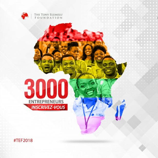 Soutien à l'entreprenariat de la Tef : Les candidatures pour le 4e cycle du programme de développement acceptées