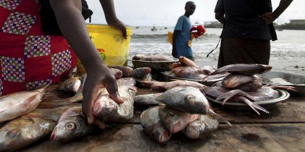 Pêche : l'UE se félicite d'un partenariat gagnant-gagnant avec le Gabon