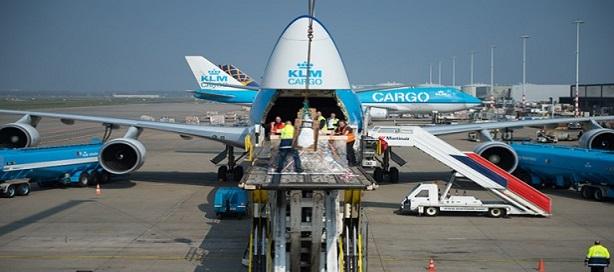 Air France KLM Cargo devient le premier groupe de compagnies aériennes à adopter Dg AutoCheck