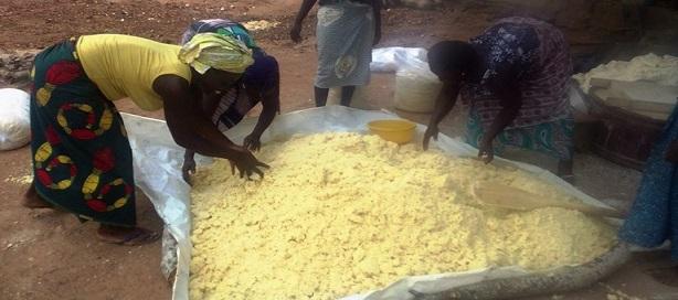 La BAD lance des programmes en faveur des Pme agroalimentaires dans 7 pays africains dont le Sénégal