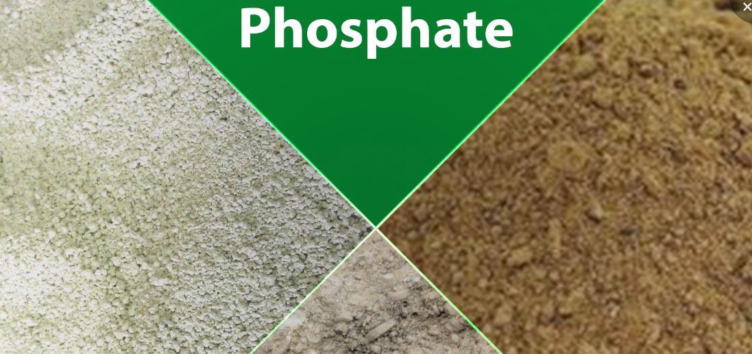 Le phosphate du Sénégal tombe de son piédestal au premier trimestre 2019