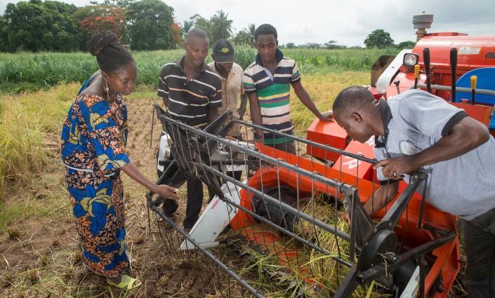 De nouvelles politiques et de nouveaux investissements s'imposent d'urgence pour soutenir les jeunes ruraux dans les pays les plus pauvres, selon un nouveau rapport de l'ONU