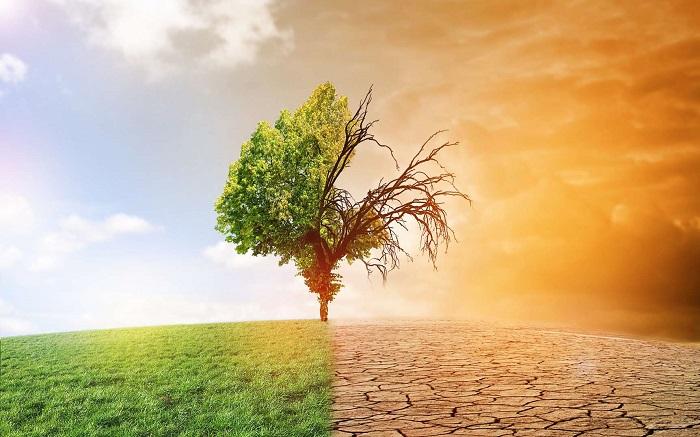 Les politiques fiscales pour lutter contre le changement climatique