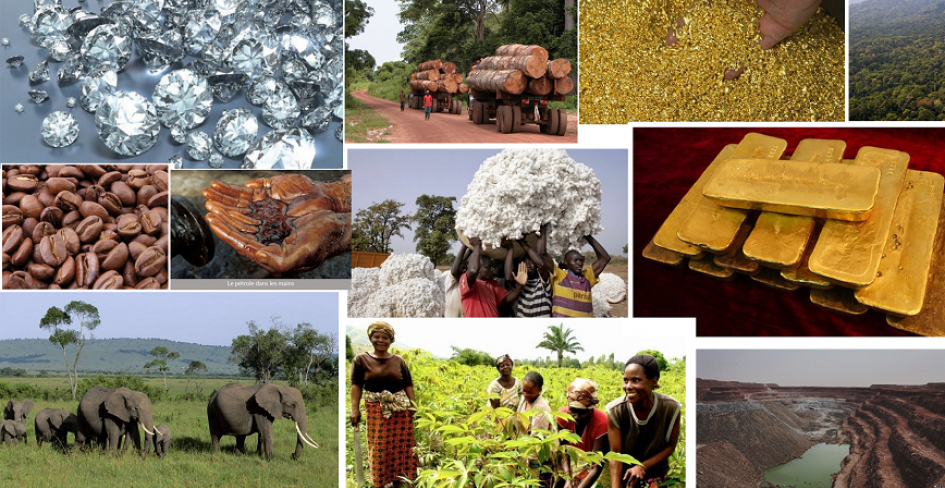 Economie centrafricaine