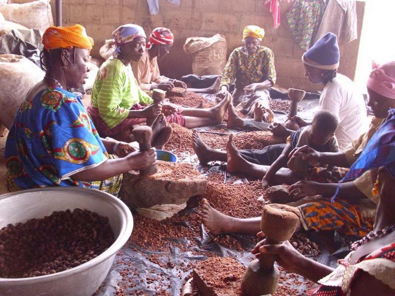 Filière karité au Burkina Faso.