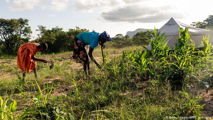 Balance des paiements Guinée Bissau : le taux de croissance situé à 4,5 pour cent en 2019