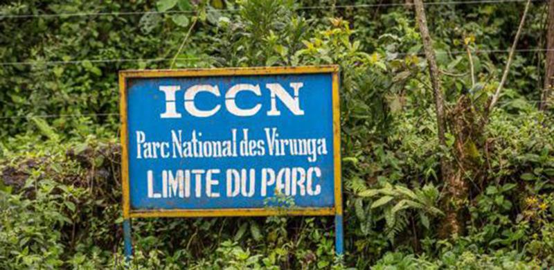 Parcs Virunga et Salonga.RDC