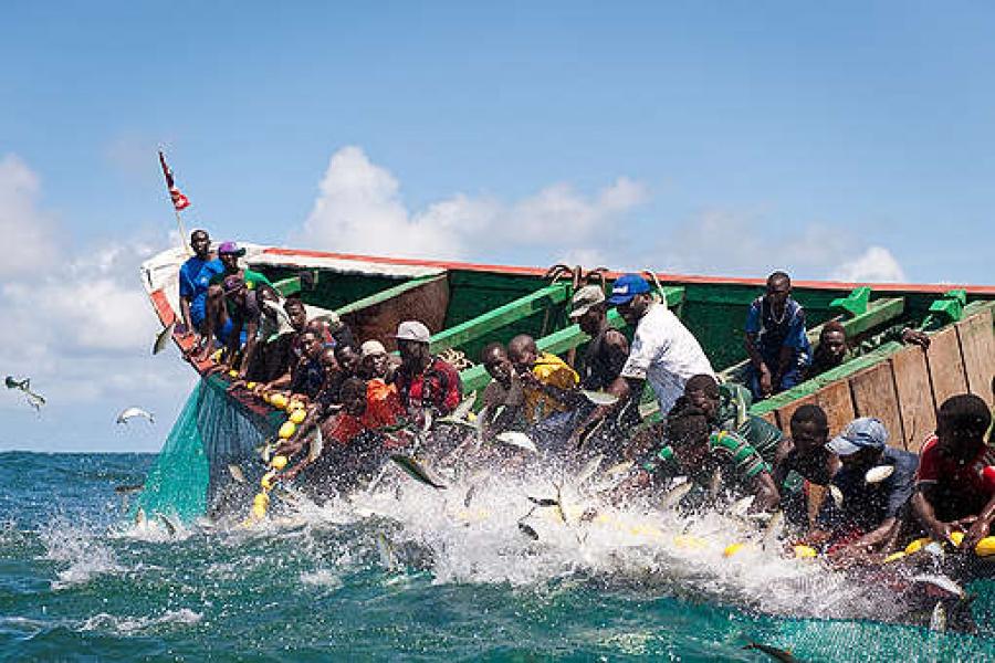 Greenpeace apporte son soutien aux pêcheurs artisanaux victimes de l'accord entre le Sénégal et l'Ue