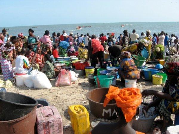 Femmes mareyeuses Sénégal