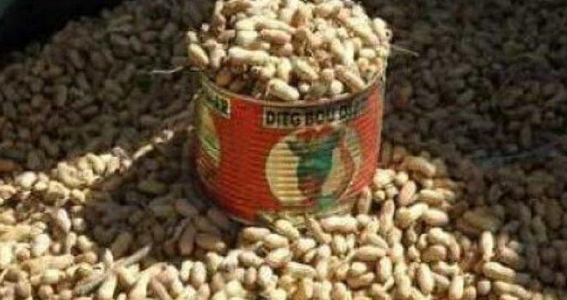 Campagne arachidière 2020-2021 au Sénégal.