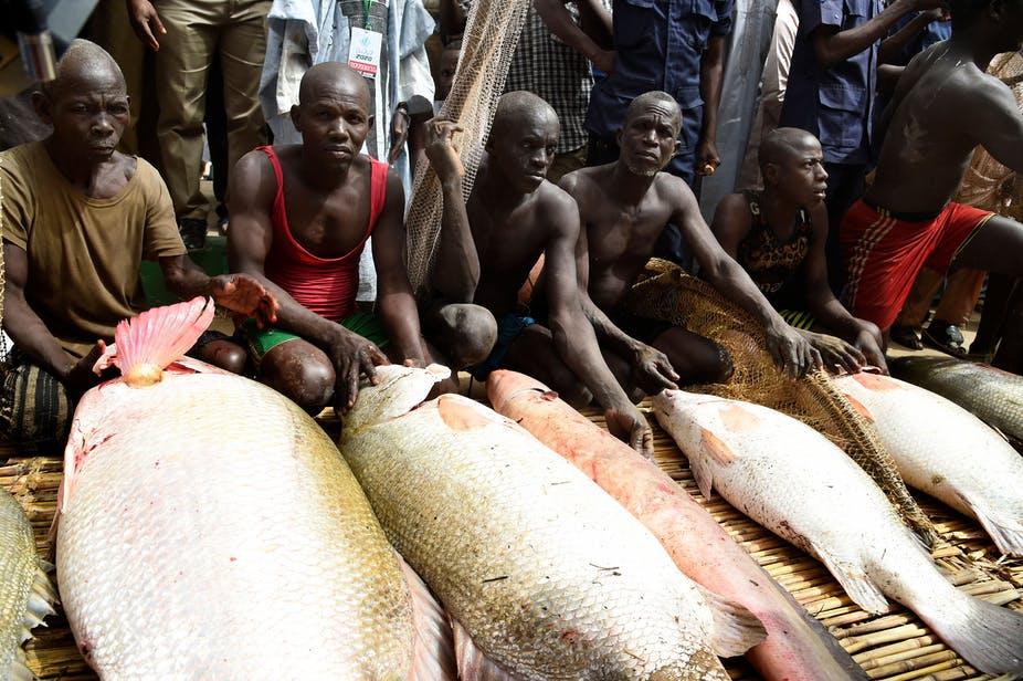 Nigéria : le développement socio-économique menacé par la pêche illégale