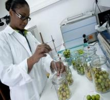 Consensus sur l'investissement durable dans la recherche