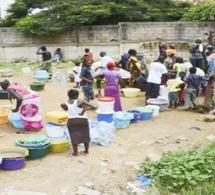 Manque d'eau à Dakar : Las Plamas la résiliente, n'acceptera plus jamais !