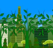 ENVIRONNEMENT-SANTE : ''AGIR'' pour la santé et le bien-être des populations
