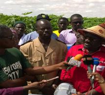 PSE : les recommandations du rapport sur les allocations budgétaires agricoles