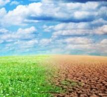 SENEGAL : 22,5 milliards de l'Etat pour faire face aux changements climatiques