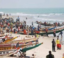 Accroissement trimestriel des débarquements de la pêche sénégalaise, selon la Dpee