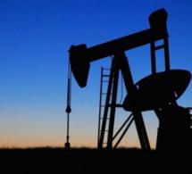 Qu'est-ce que la malédiction du pétrole ? Peut-on l'éviter au Sénégal ?