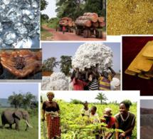 Centre Afrique : le FMI se félicite des progrès réalisés dans la mise en œuvre de l'Accord politique pour la paix et la réconciliation (APPR).