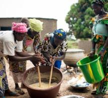 Sénégal : 14 500 emplois directs et 35 000 emplois indirects attendu du projet de zone de transformation agro-industrielle de la Casamance