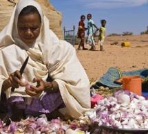 Niger : le Fmi liste les priorités de la réforme du programme économique et financier