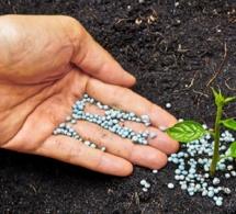 Projet 4R-Programme 4R-Engrais : une innovation canadienne au service de l'agriculture en Afrique subsaharienne