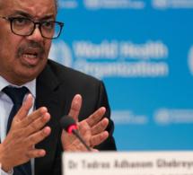Mises en garde de l'Organisation mondiale de la santé contre les risques de la grippe