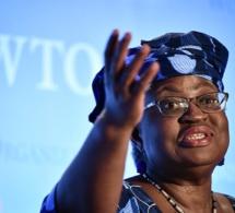 Direction de l'OMC : explication sur le meilleur profil des trois candidats africains