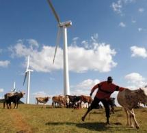 Frédéric Baralon : «inscrire les énergies renouvelables dans une stratégie de flexibilité en fera le moteur économique de l'Afrique»