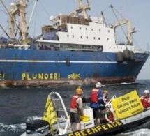 Pillage des océans d'Afrique de l'Ouest : encore et toujours les multinationales de la pêche avec la complicité des gouvernements