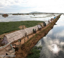 Climat-Afrique : graves menaces sur la santé humaine, la sécurité alimentaire, la paix et la biodiversité