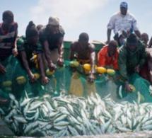 Journée mondiale de la pêche au Sénégal.