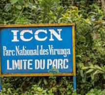 La société civile congolaise demande l'arrêt des explorations pétrolières dans les Virunga et Salonga.